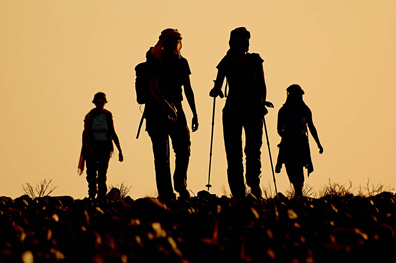 Deal Buster- Trekking Trips' Deals