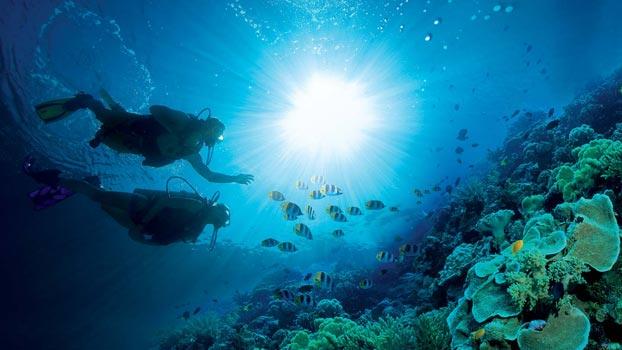 Scuba Diving Explained