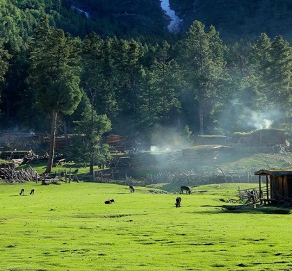 Why you should choose Mushkpuri for your next vacation