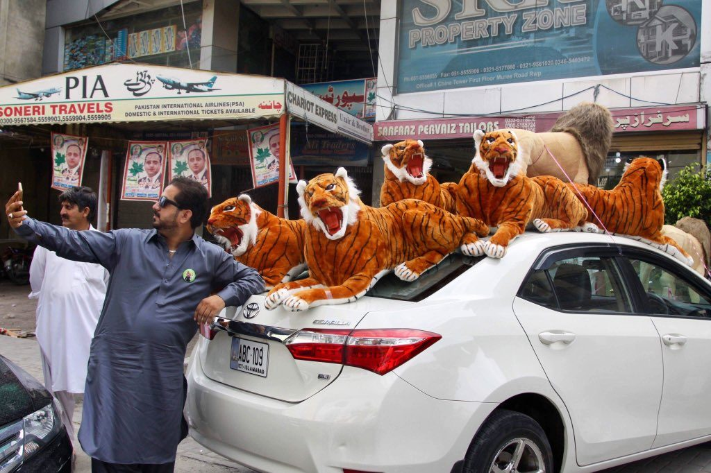 sher4